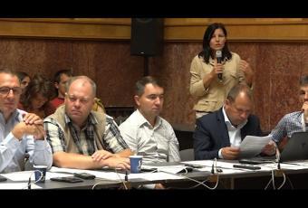Sógor Enikő, egyesületünk elnöke a Hargita Megye Tanácsa ülésén